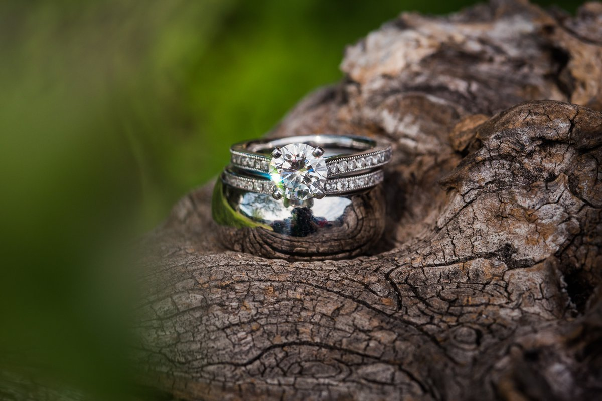 Montesino Ranch Wedding wedding rings